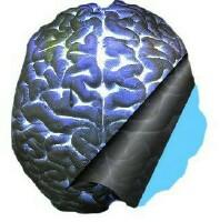 etl-bi-cerveau